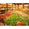 连锁进口零食店加盟费用 河南水果店加盟 新乡市百年邻家商贸有