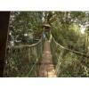 湖南丛林探险-木质吊桥哪家好-郑州弘创游乐设备有限公司